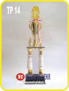 Harga Piala Plastik di Jakarta | Bandung | Surabaya | Jogja
