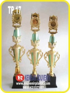 Aneka Macam Harga Piala Kejuaraan Perlombaan