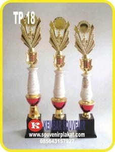 Distributor Grosir Piala Murah di Indonesia