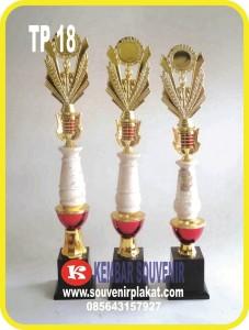 grosir piala, trophy timah, trophy futsal