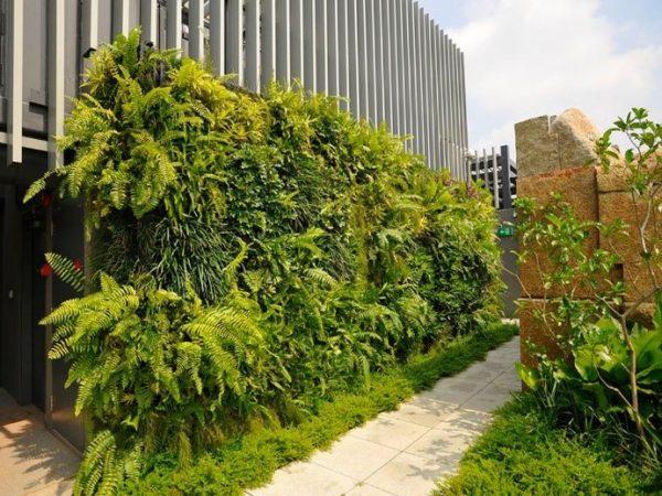 Kebun Vertikal