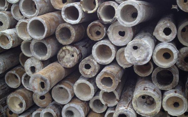Bambu Yang Rentang - pengawetkayu.com