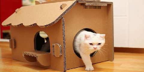 Rumah Kucing - i.pinimg.com