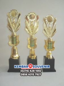 Harga Piala Kecil, Harga Piala Plastik Murah, Macam Macam