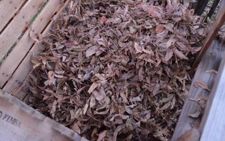 Ide Kerajinan Cara Membuat Pupuk Kompos DIY